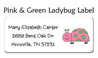 Pink and Green Ladybug