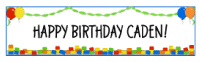 Building Blocks Party Banner