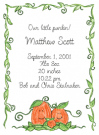Pumpkin Family Of 3 Baby Announcement Envelope