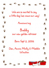 Dog Prints Invitations