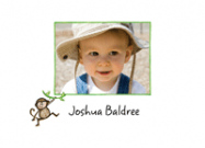 Monkey Photo Card Stationery